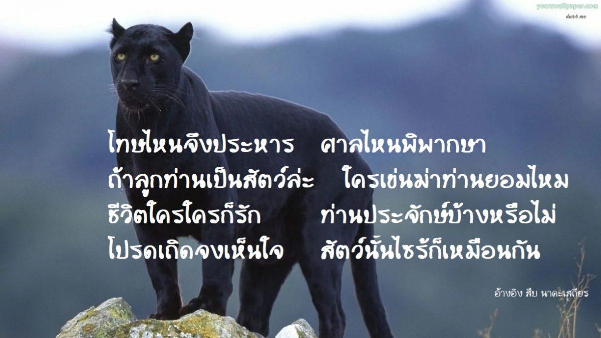 สำนึกรักสัตว์ป่า ตามที่ คุณสืบ นาคะเสถียร เขียนร้องกรองปลุกสติ